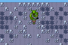 Rayquaza at the top of the Sky Pillar.